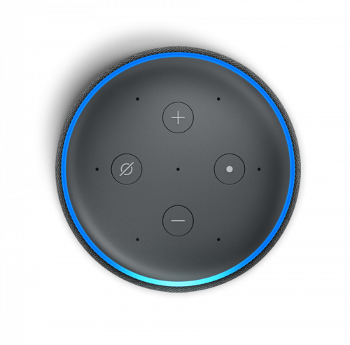 Holidaymaker for voice assistants